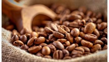Почему так важно измерять влажность кофейных зерен