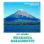 Марагоджип Никарагуа