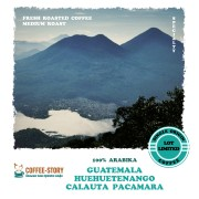 Гватемала SHB EP Huehuetenango Calauta Pacamara